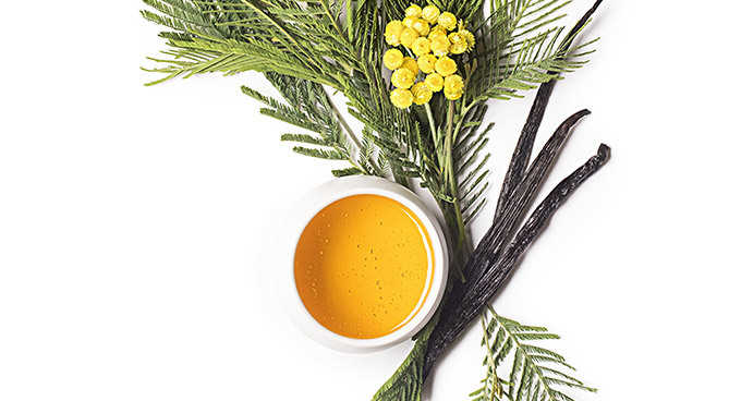 Nuxe Reve De Miel Melting Honey Body Oil Balm 200 ML.jpg (32 KB)
